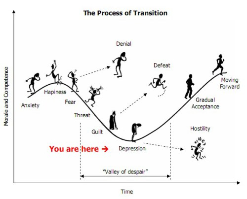 The Valley of Despair and the Process of Transition