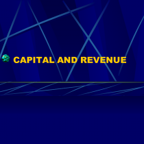 revenue capital expenditure